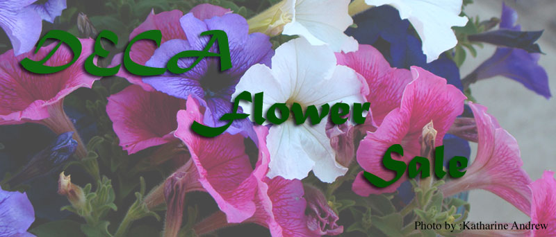 Spring into action with DECA's flower sale