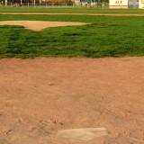 Spring Sports Struggle