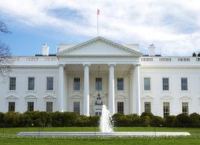 Trump's cabinet: unprecedented and unpredictable